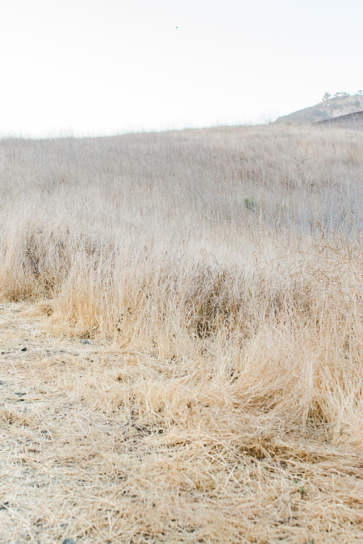 blog-Malibu-State-Creek-Park-Engagament-Shoot-boho-0021