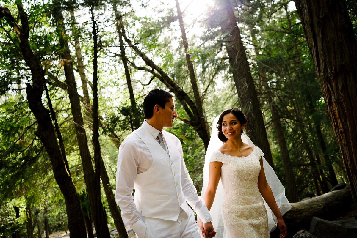 wedding photography aT YOSEMITE NATIONAL PARK