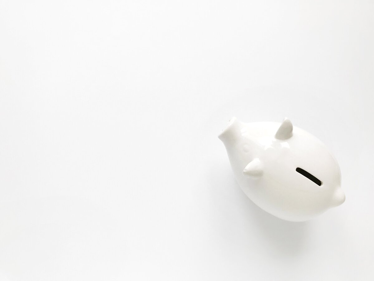 pig-white-finance-money-financial-finances-piggy-bank-saving-money-personal-finance_t20_oRw8Ae