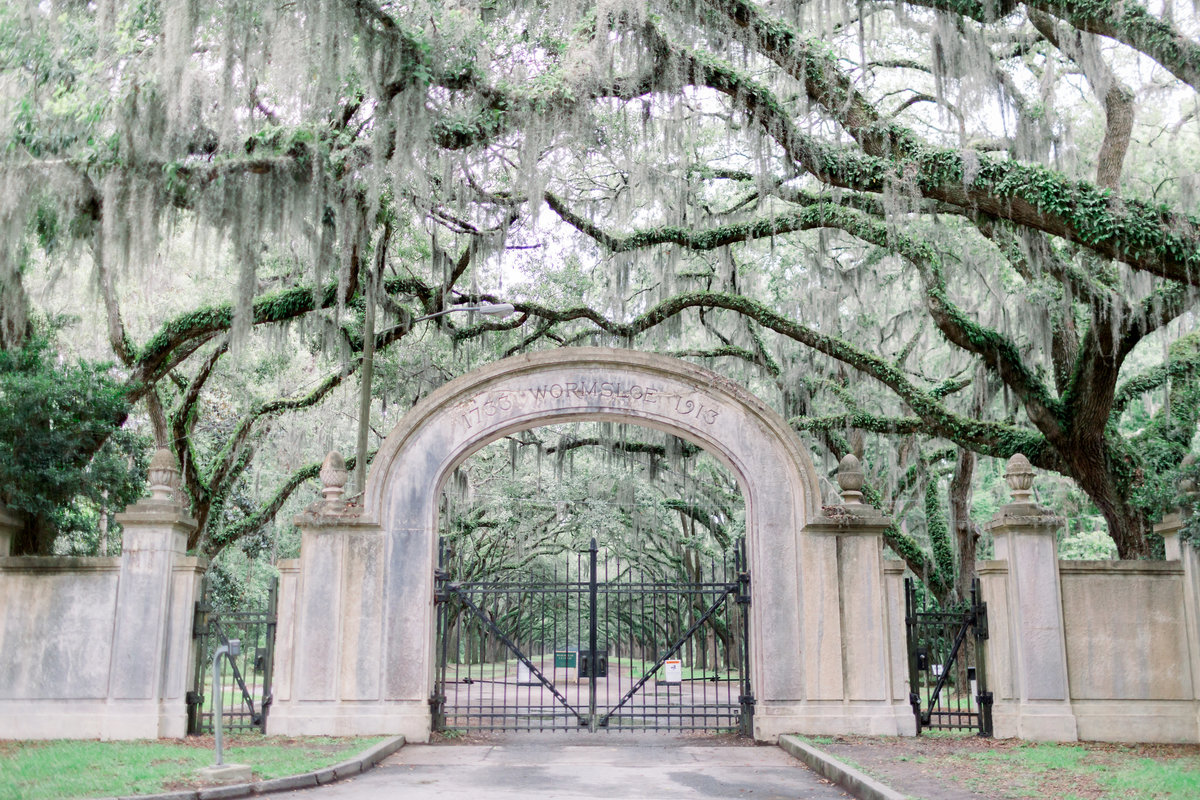 wormsloe historic site, isle of hope, georgia