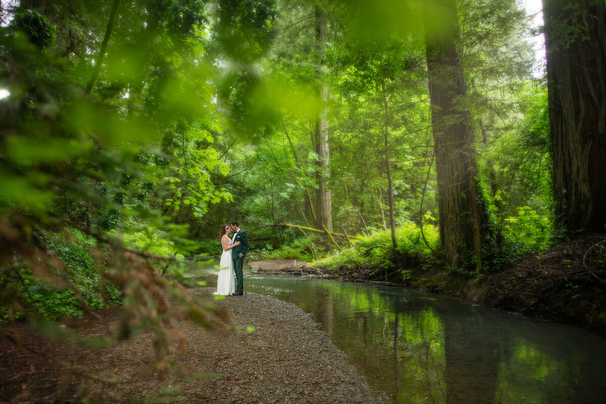 Avenue-of-the-Giants-Redwood-Forest-Elopement-Humboldt-County-Elopement-Photographer-Parky's Pics-4