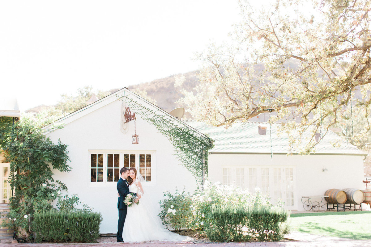 Triunfo Creek Vineyard Wedding-6574