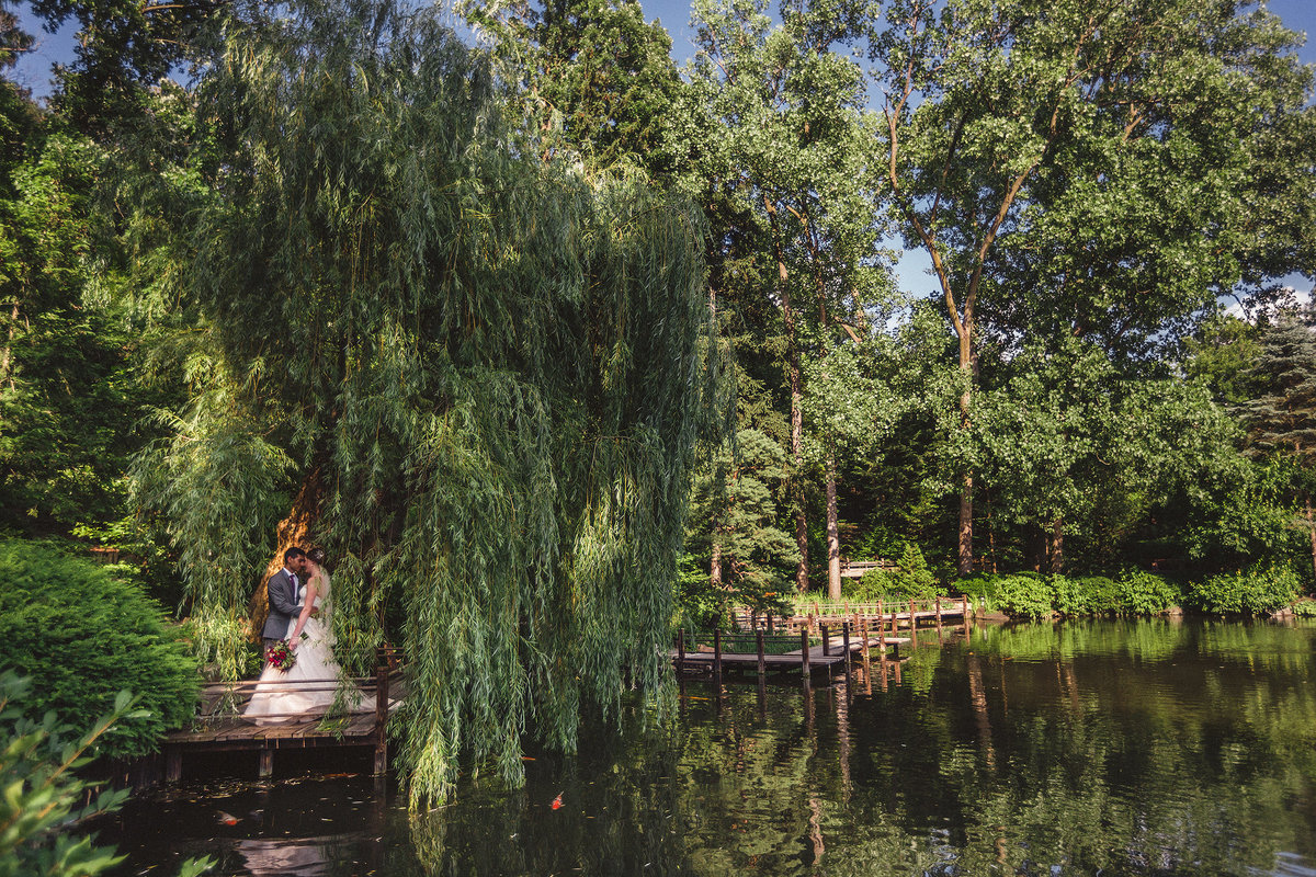 bride and groom under weeping willow tree at anderson japanese gardens in rockford illinois