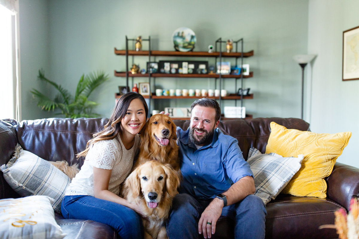 In Home Lifestyle Couple's  Session with dogs on couch  St. Louis by Amy Britton Photography Photographer  in St. Louis