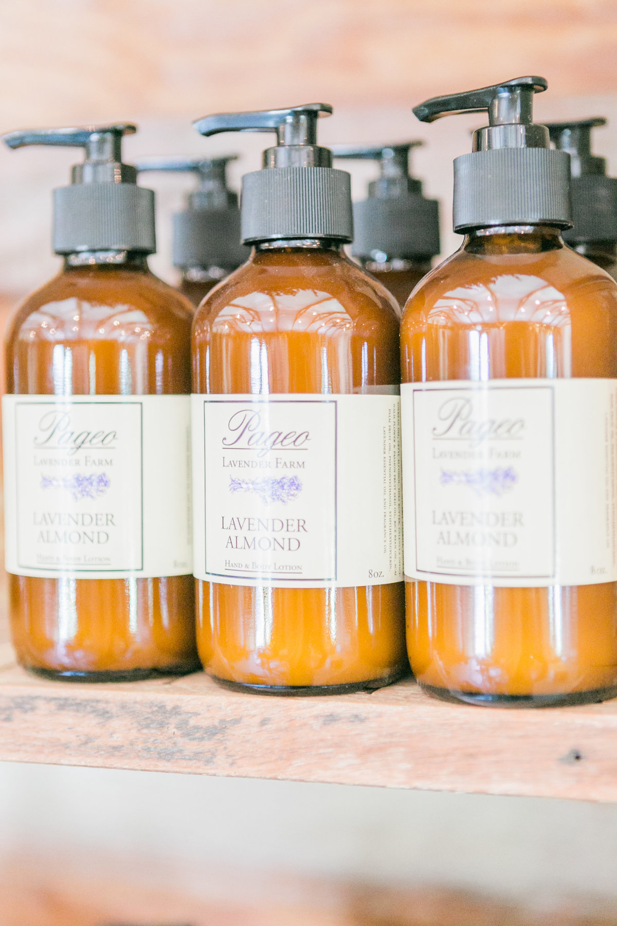 Pageo Lavender Almond Lotion
