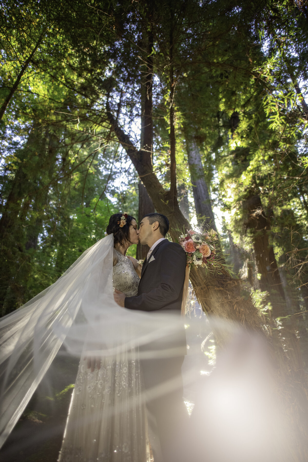 Redway-California-elopement-photographer-Parky's-Pics-Photography-redwoods-elopement-Avenue-of-the-Giants-Pepperwood-California-05.jpg