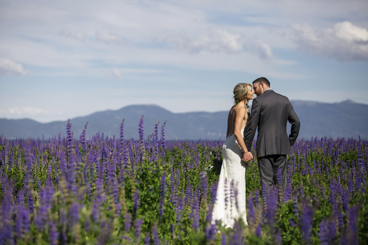 Lake Tahoe lupin fields wedding photos