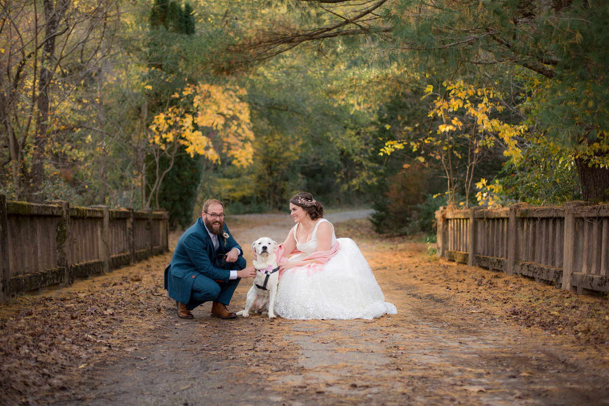 Bride and groom photographed on bridge with dog in fall time in north georgia mountains