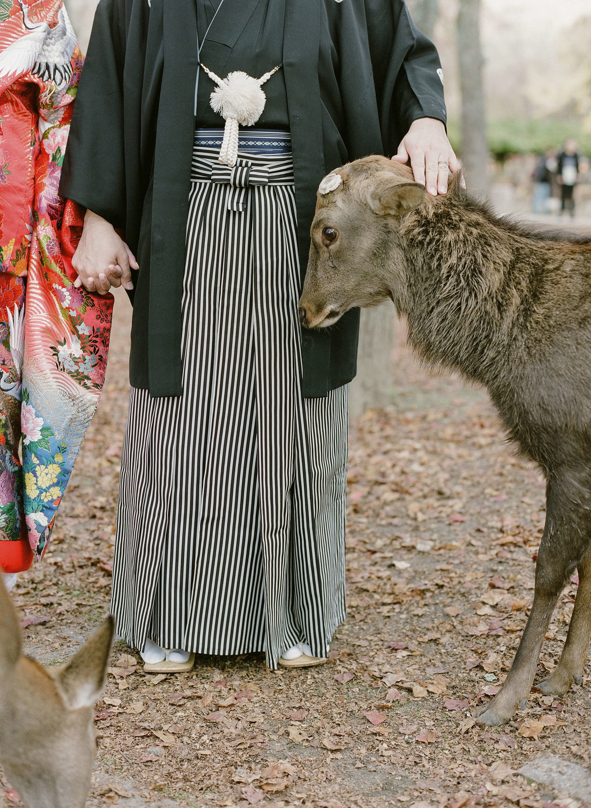 19-KTMerry-weddings-japan-deer