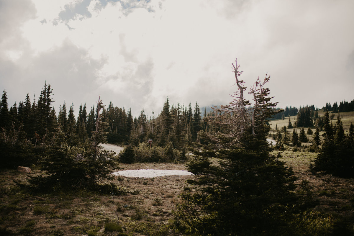 Marnie_Cornell_Photography_Engagement_Mount_Rainier_RK-61