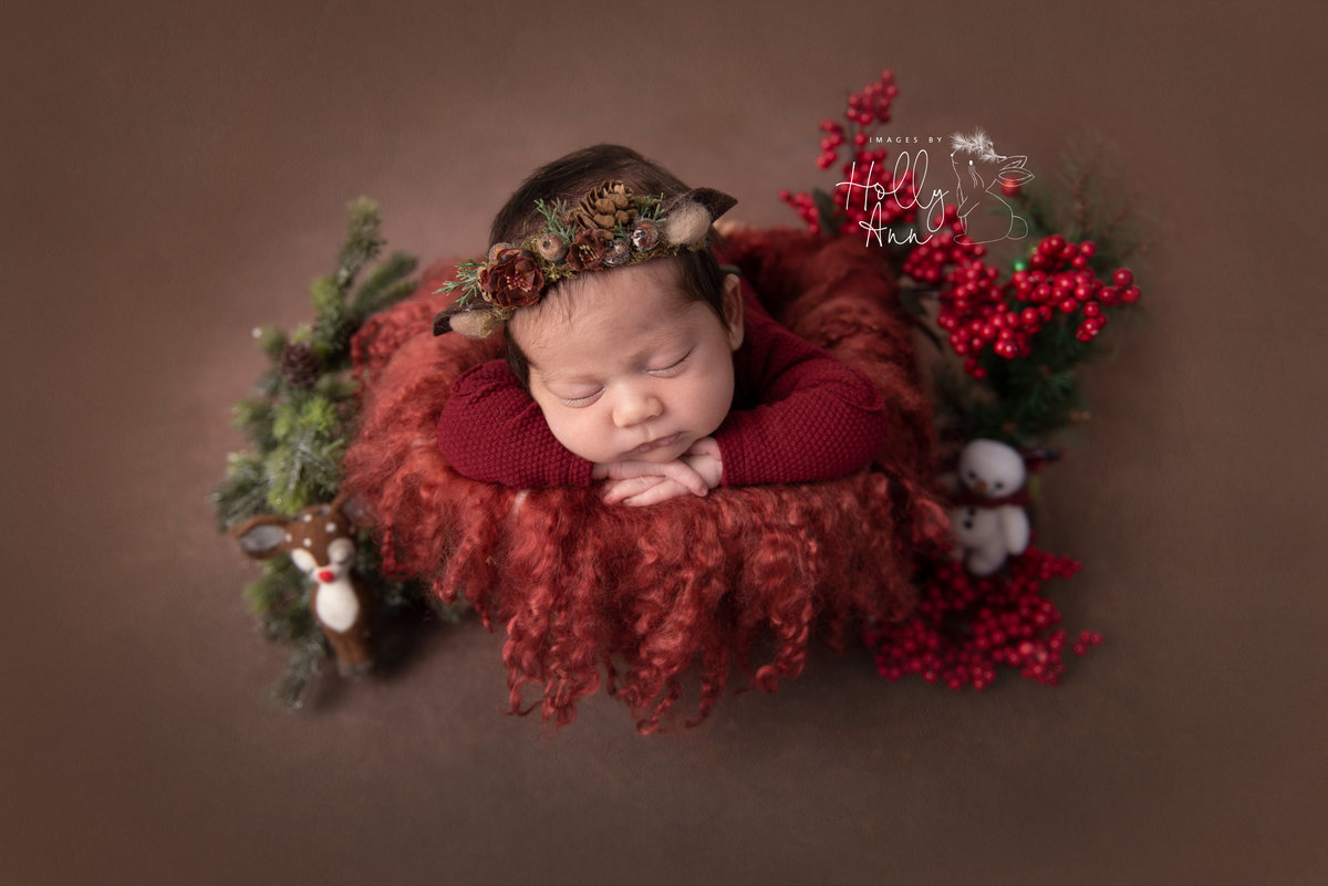 glens falls ny newborn studio portrait session