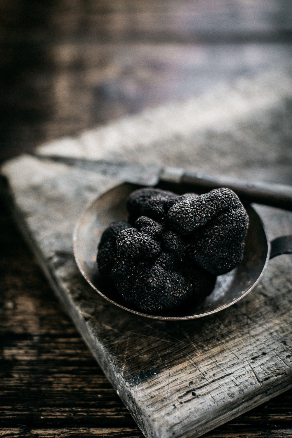 The Truffle Farm - Anisa Sabet - The Macadames - Food Travel Lifestyle Photographer-51