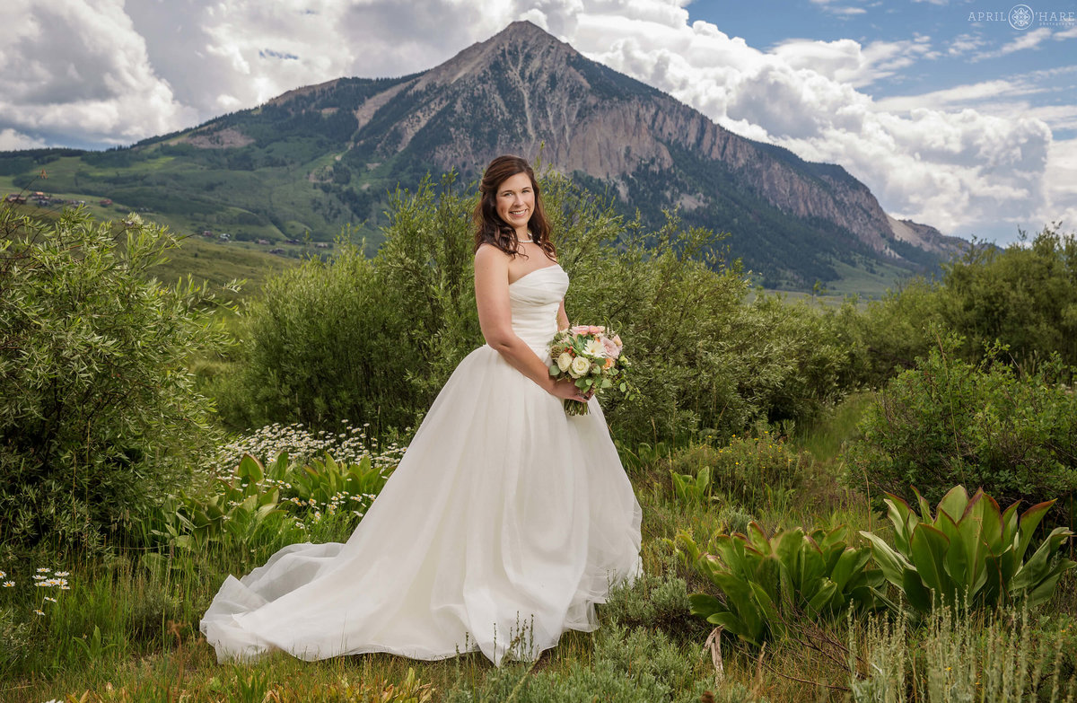 Crested Butte Wedding Photography during Summer in Colorado