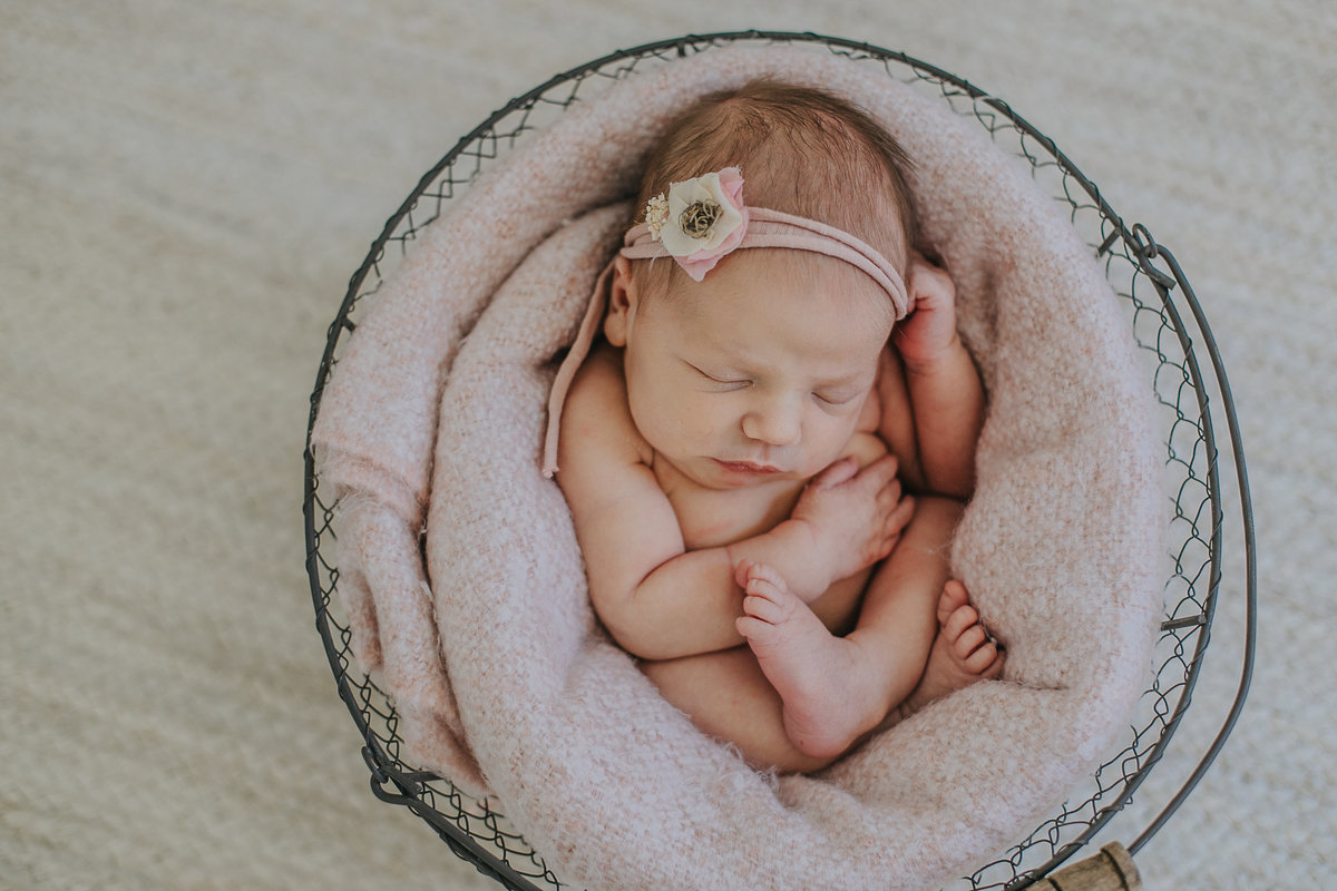raleigh-newborn-photographers-Ella-0439