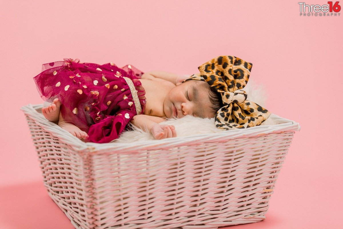 Family Newborn Photographers Orange County California