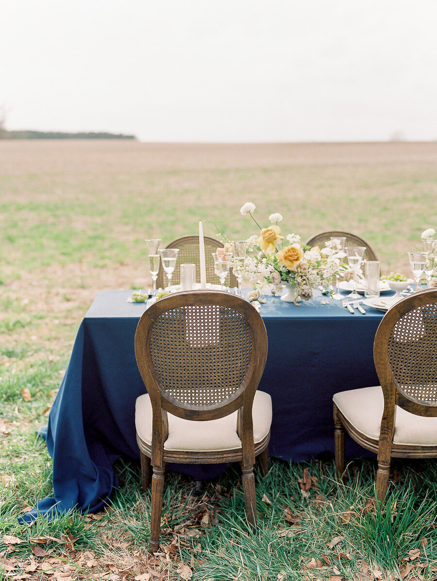 Graceful_Countryside_Fine_Art_Bridal_Maryland_Wedding_Megan_Harris_Photography-83