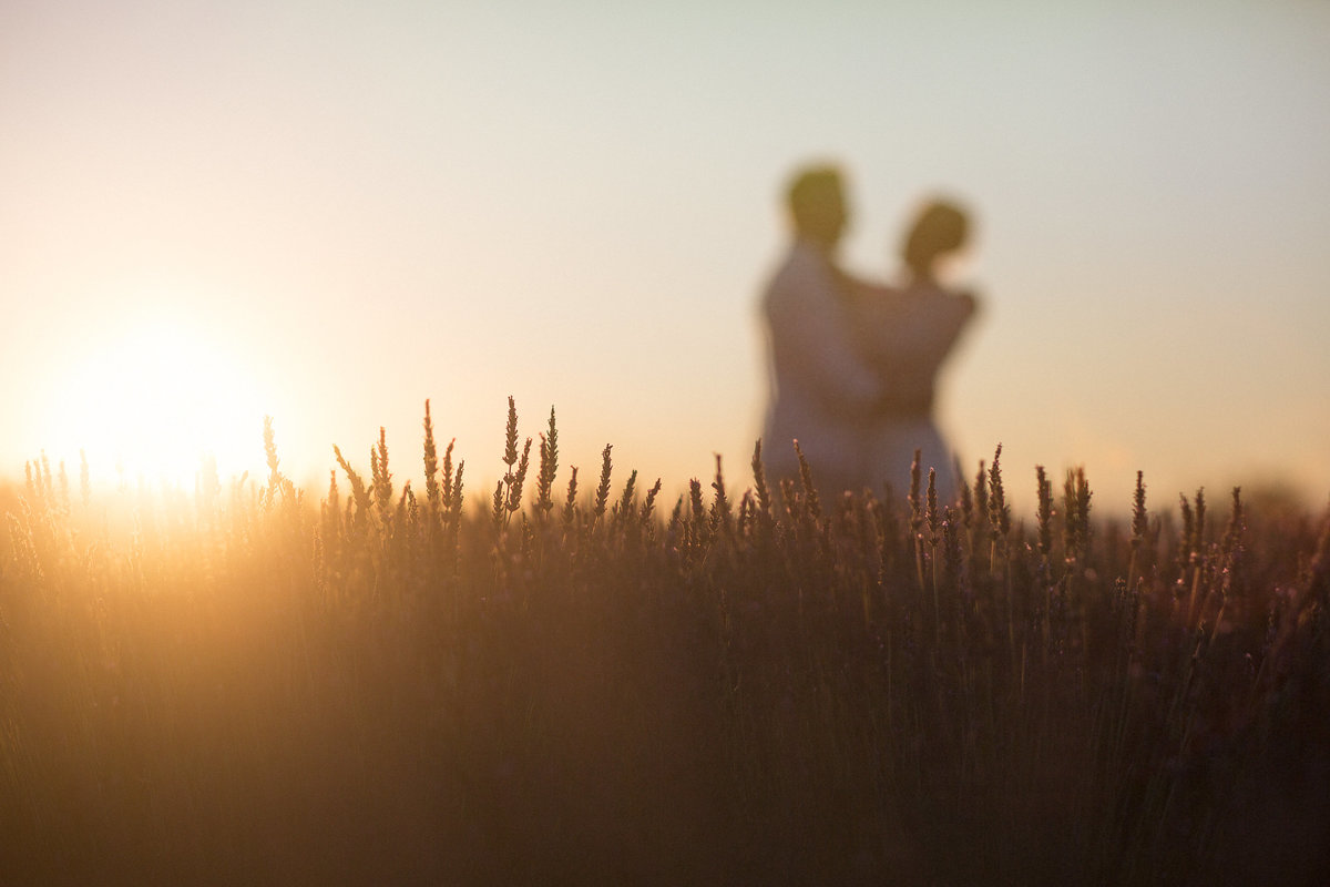 Sunset in Provence in the lavender fields with a eddingcouple holding and looking at each other