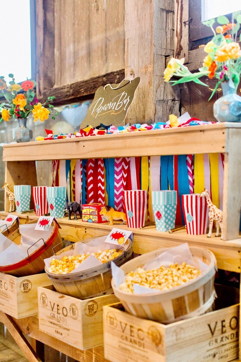Circus Themed 1st Birthday Indianapolis Party Planner_0072