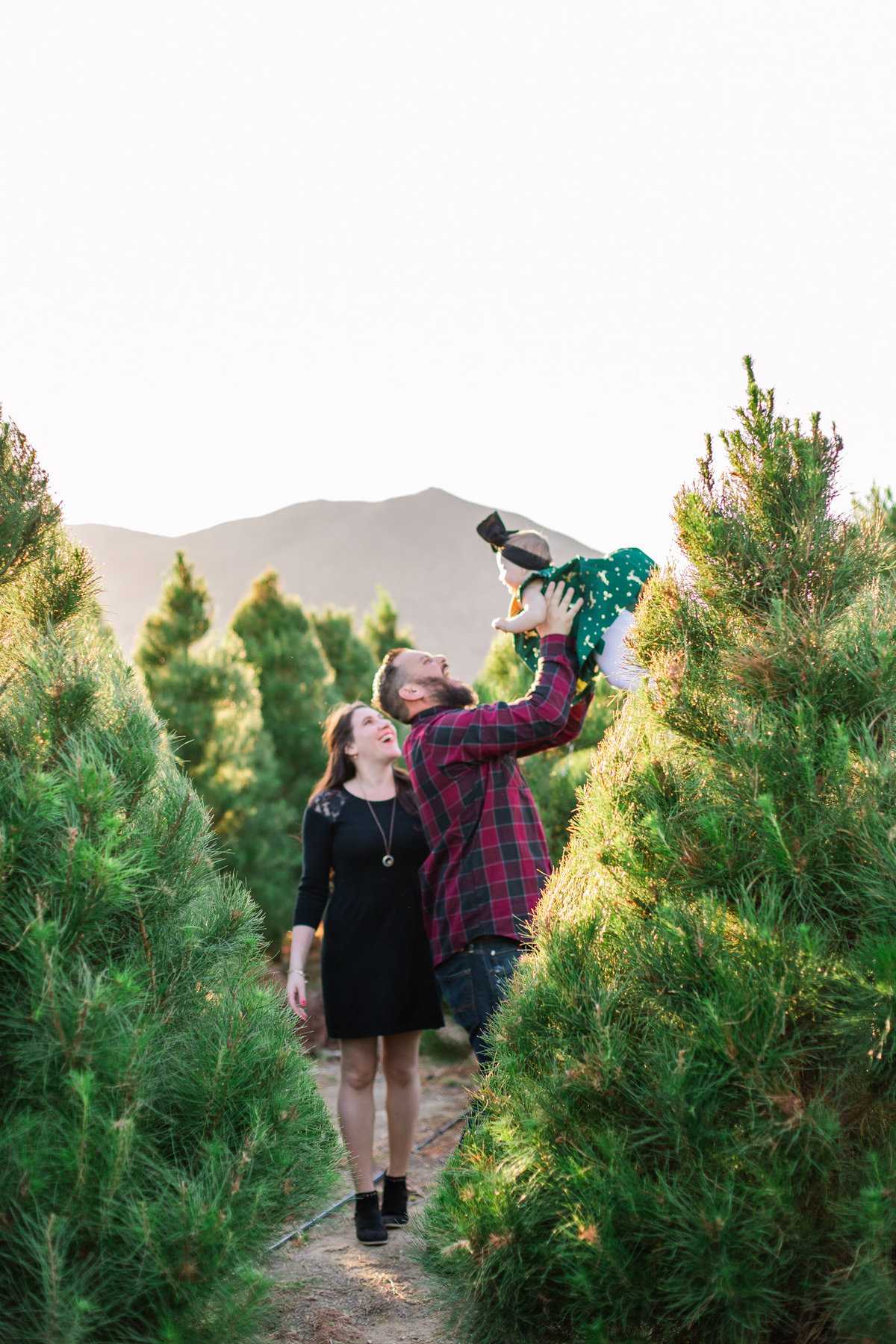 Xmas Photography, Rye Farm Christmas Tree, Family Photography A&B-23