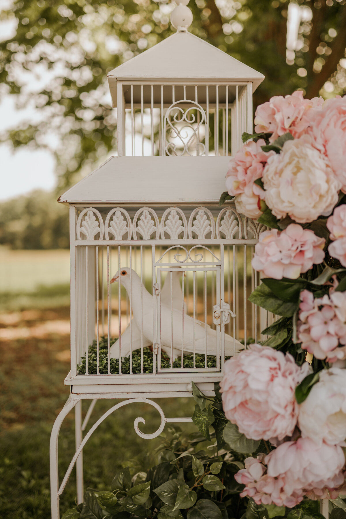 Niagara Wedding Planner