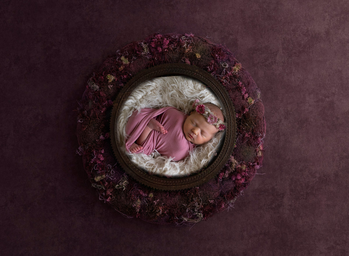 Newborn Photographer 7