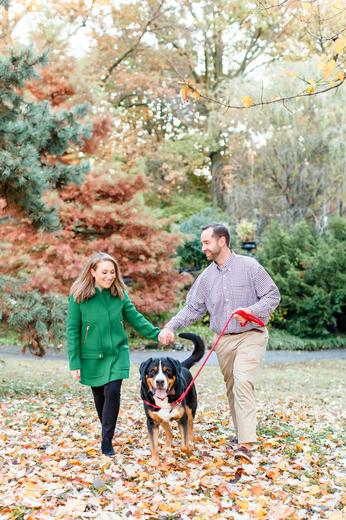 Winter Engagement  Session with green coat  couple walking dog in Fall leaves  at Lafayette Park in St. Louis by Amy Britton Photography Photographer in St. Louis