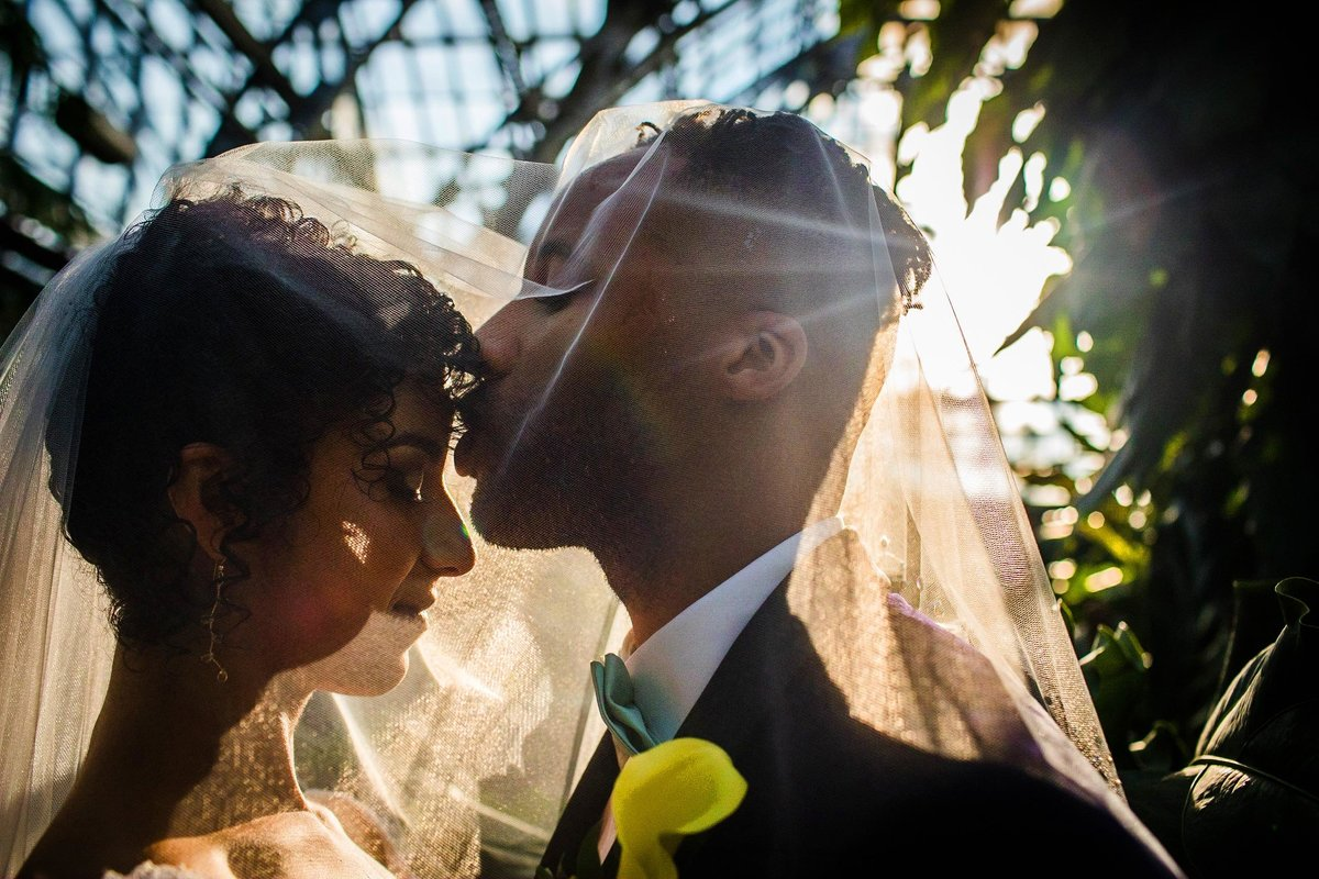 A groom kisses his bride during a Garfield Park Conservatory wedding.