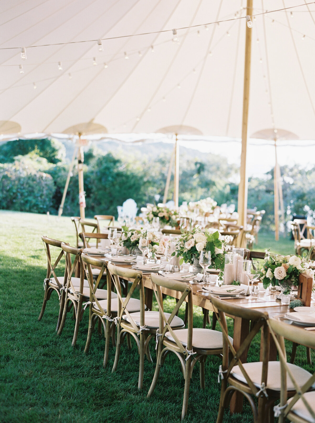 Wings Neck Tented Wedding295