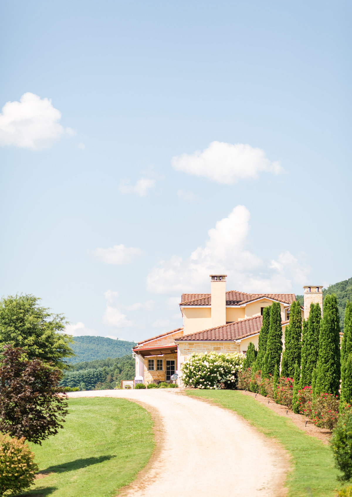 Purple & Teal Villa Nove Vineyards Summer Wedding-84