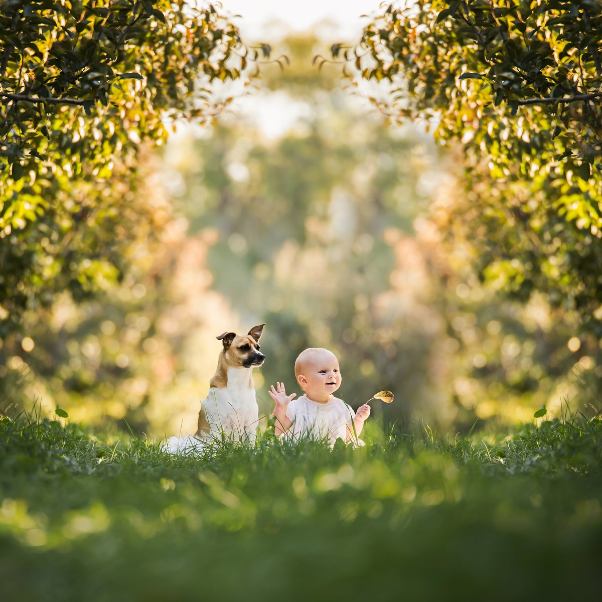 Baby sitting in a field with his dog Cle Elum Washington