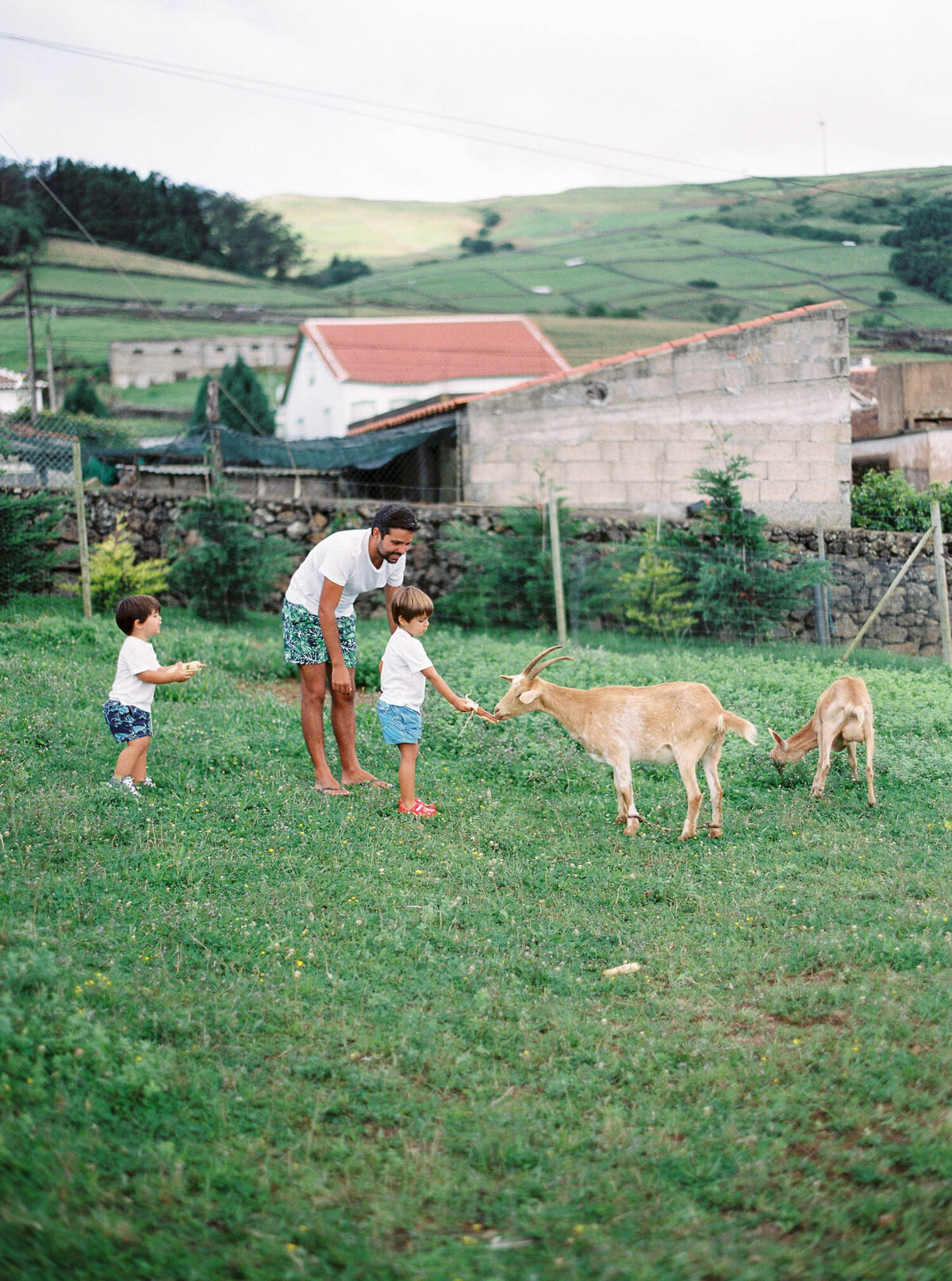 azores-beach-and-farm-maternity-and-family-photos-13