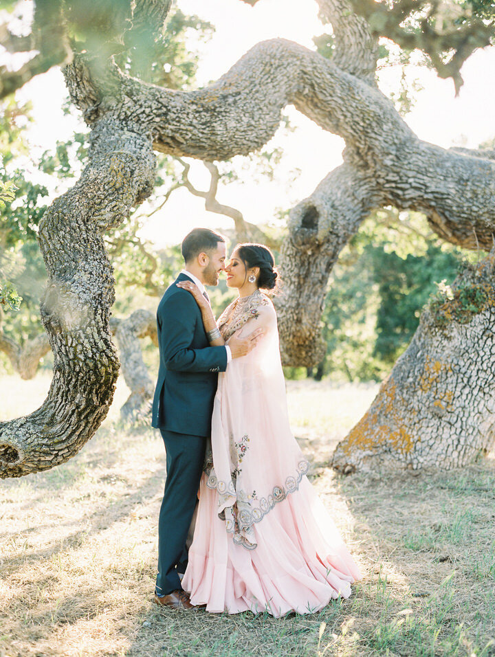 couples portraits at the oak tree at holman ranch
