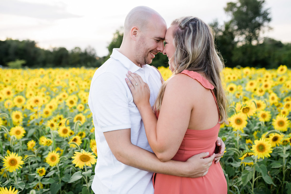 engagement session at sophia's at walden's sunflower field