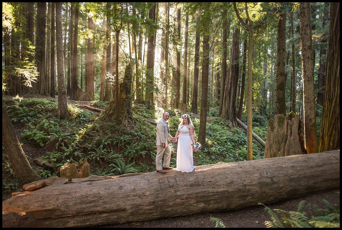 Redway-California-elopement-photographer-Parky's-Pics-Photography-redwoods-elopement--Sequoia-Park-Eureka-California-03.jpg