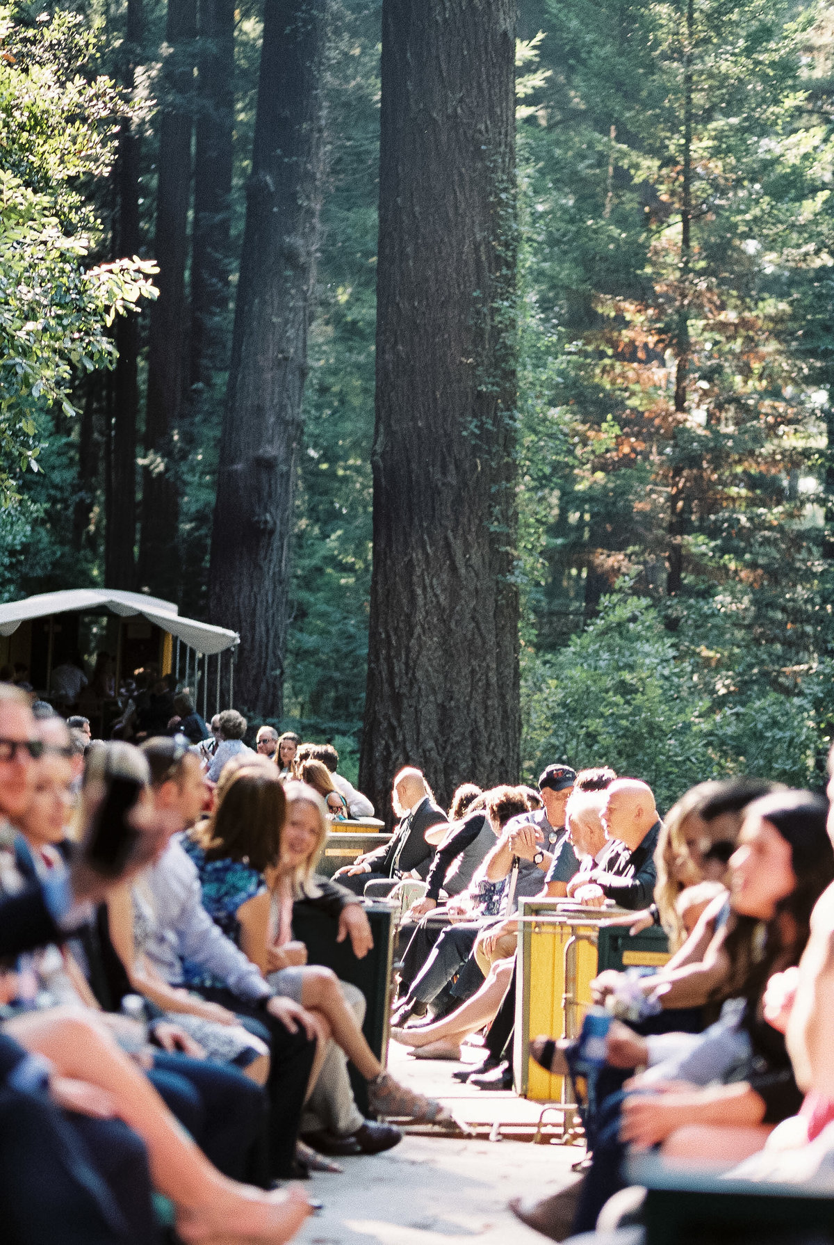 Roaring Camp Railroad Santa Cruz Wedding29