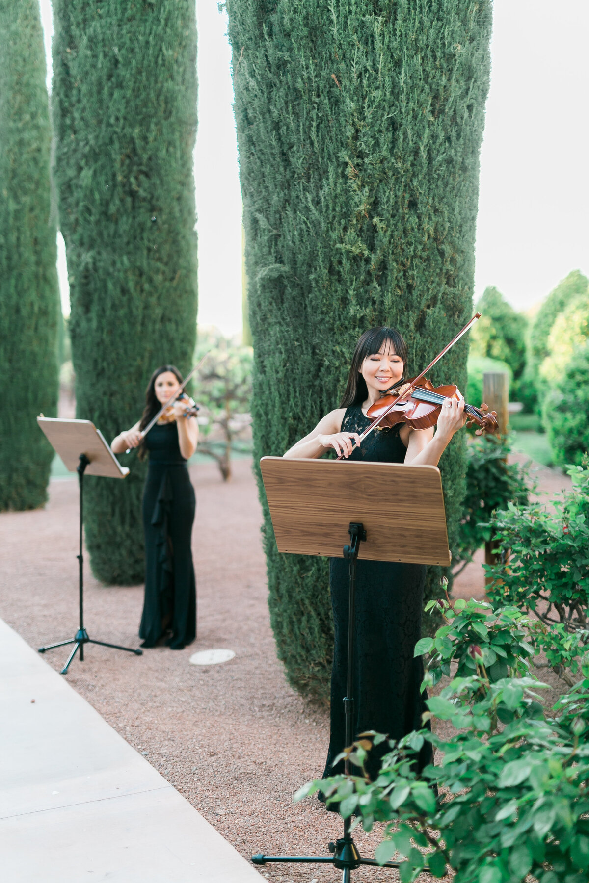 string-quartet-wedding-entertainment