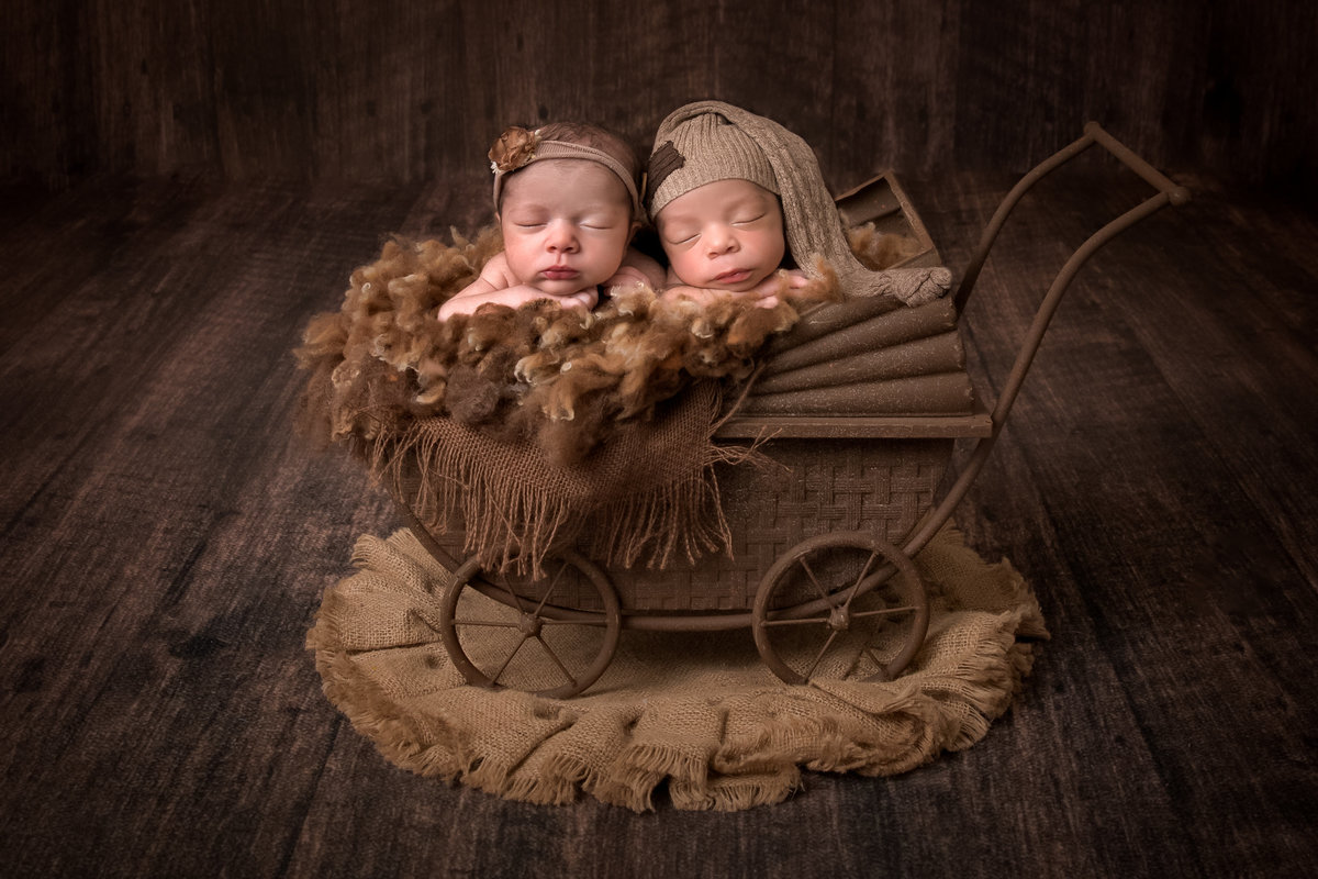 Twins in a carriage