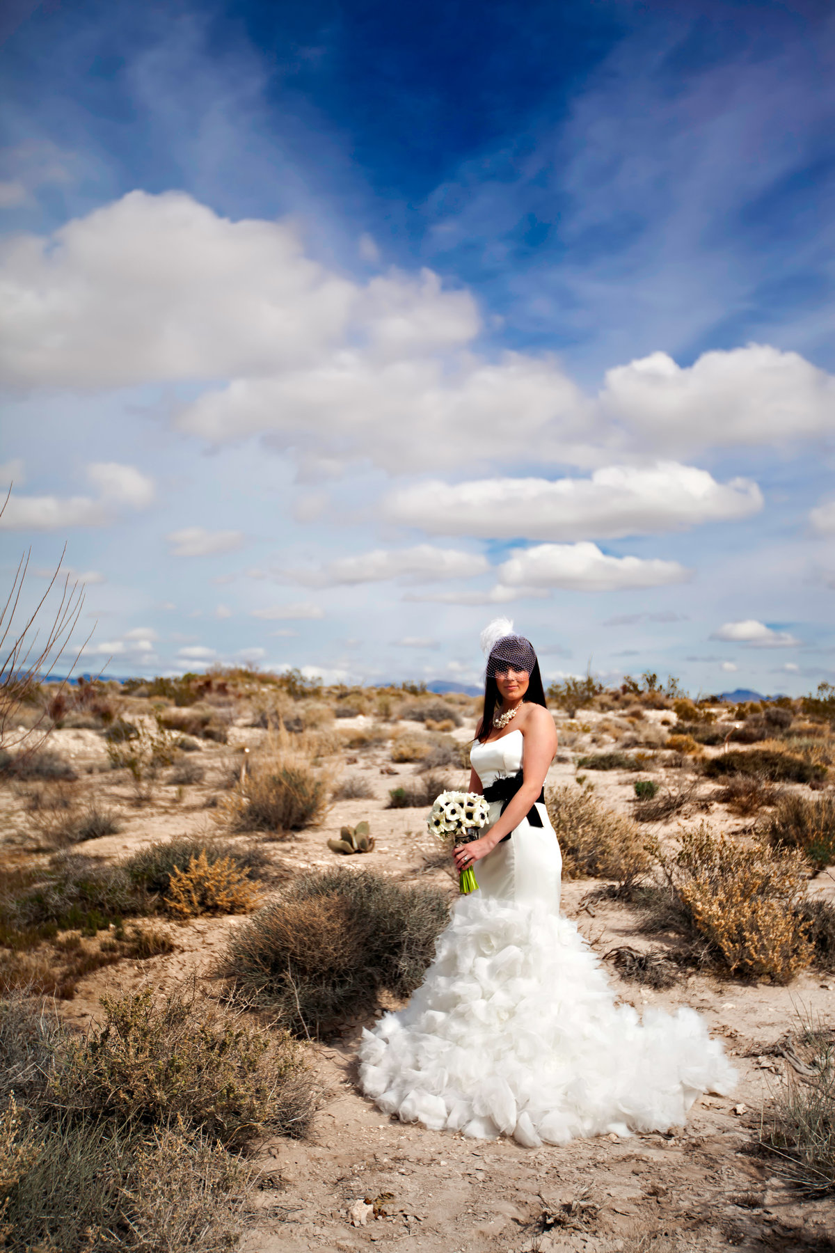 Bride in the Las Vegas Desert