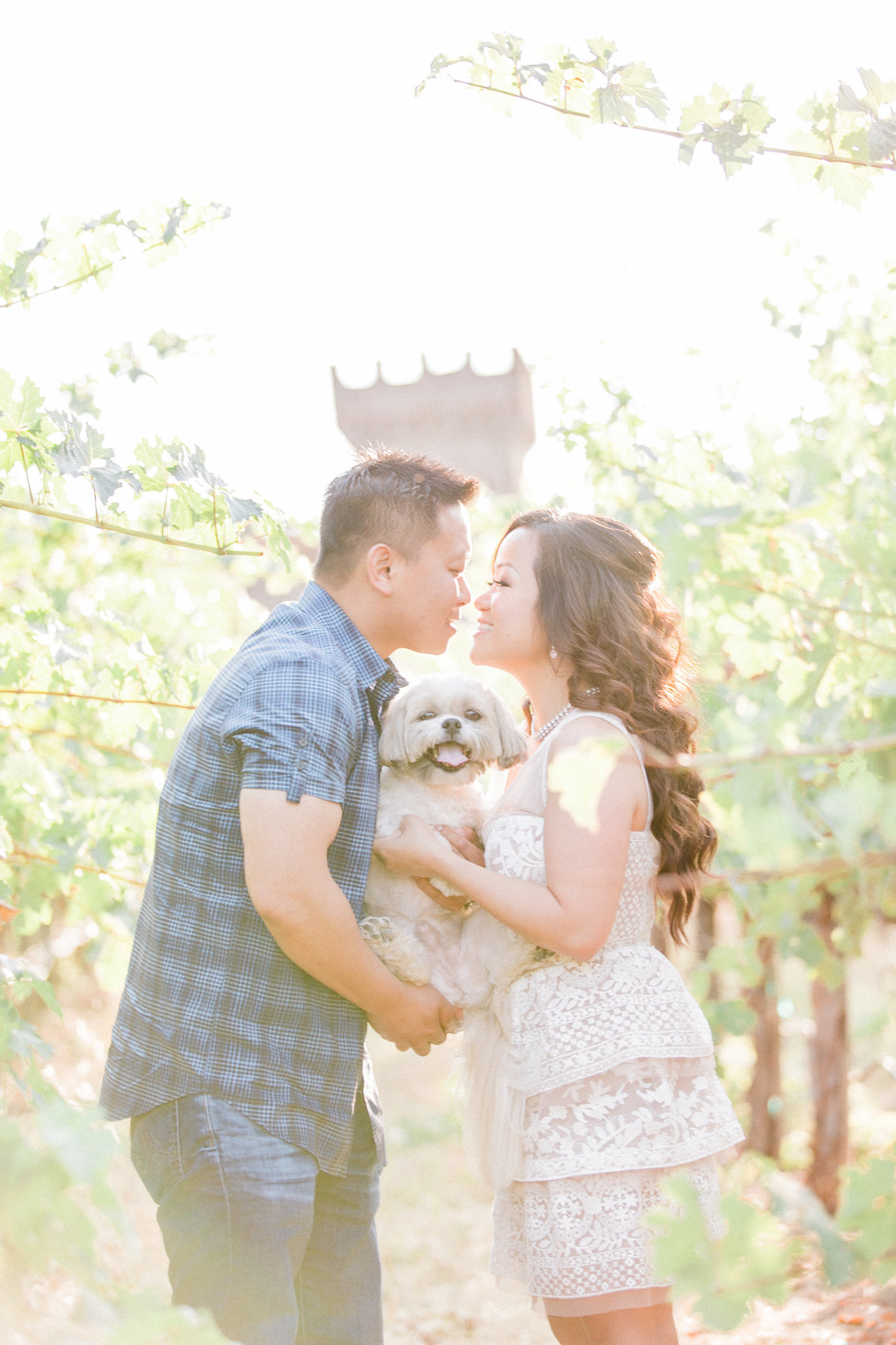003_winery-dog-engagement-photo-NapaValley