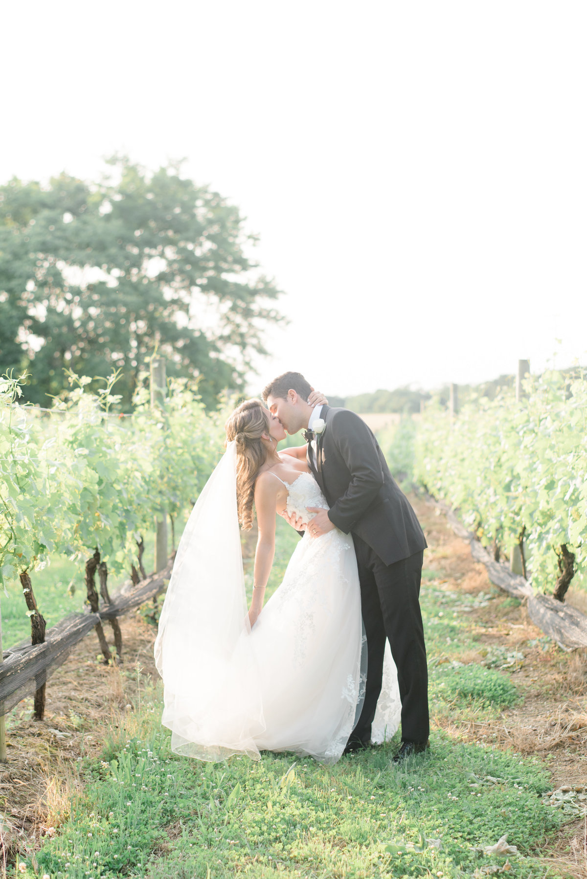 vineyards-bride-and-groom-kiss