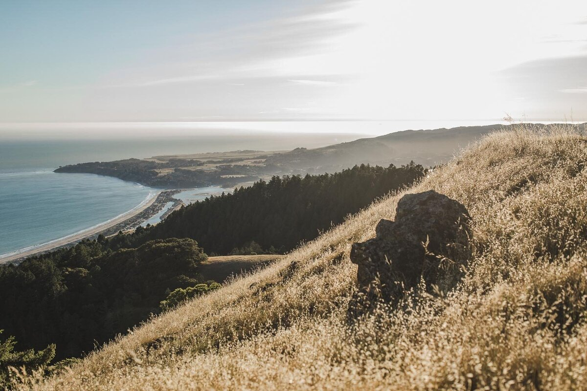 Trojan-Point-on-Mount-Tamalpais-Marin-county-engagement_session_avh_photography00059