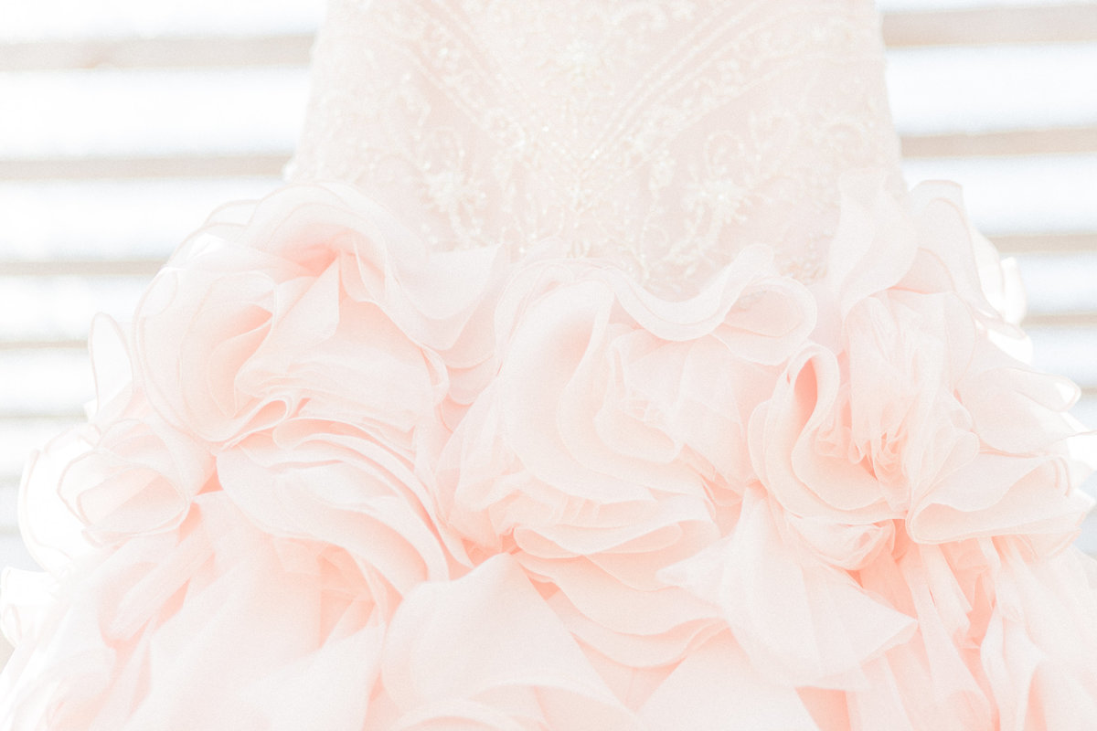 Tulle Organza Wedding Dress Detail