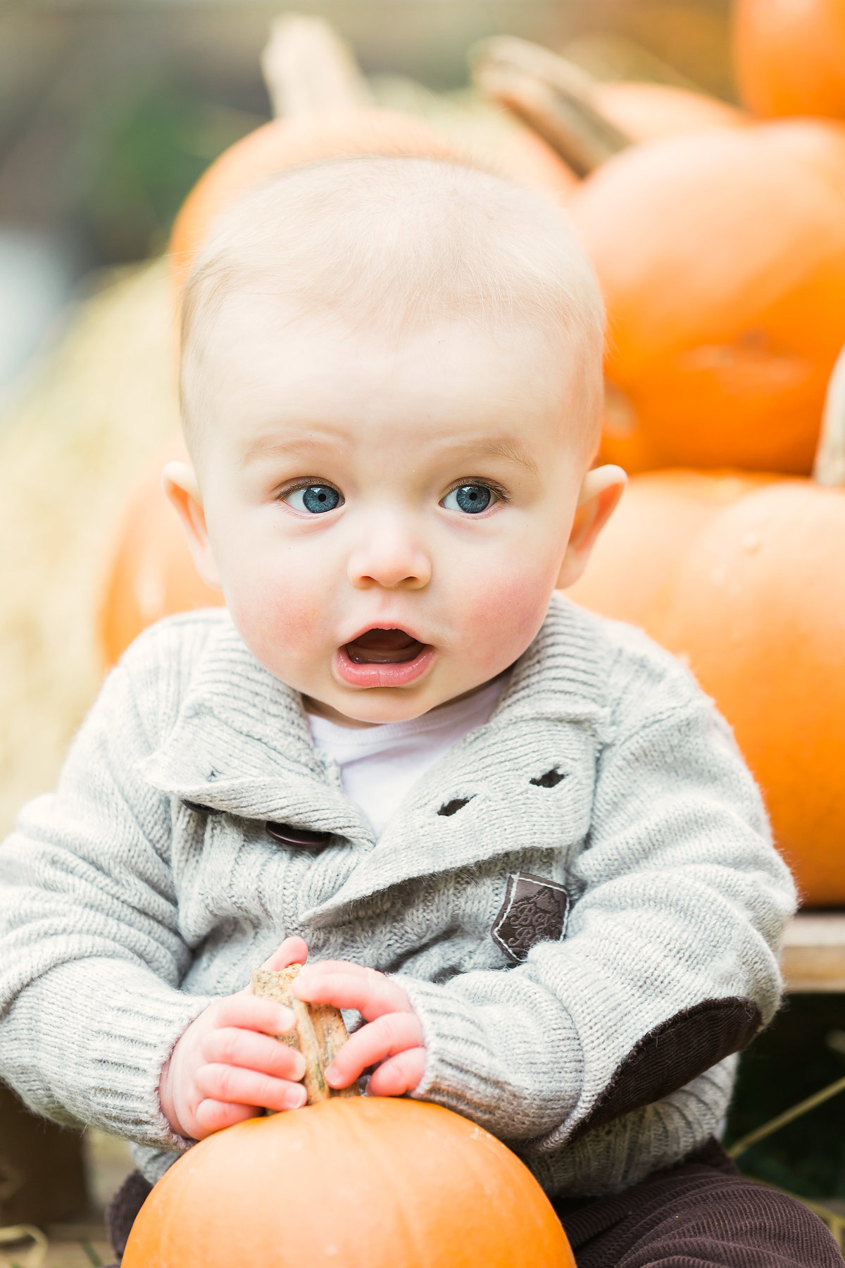Portrait of a boy with a pumpkin
