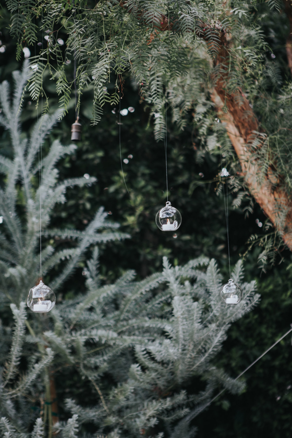 Wedding ceremony with hanging glass ornaments at the Fig House