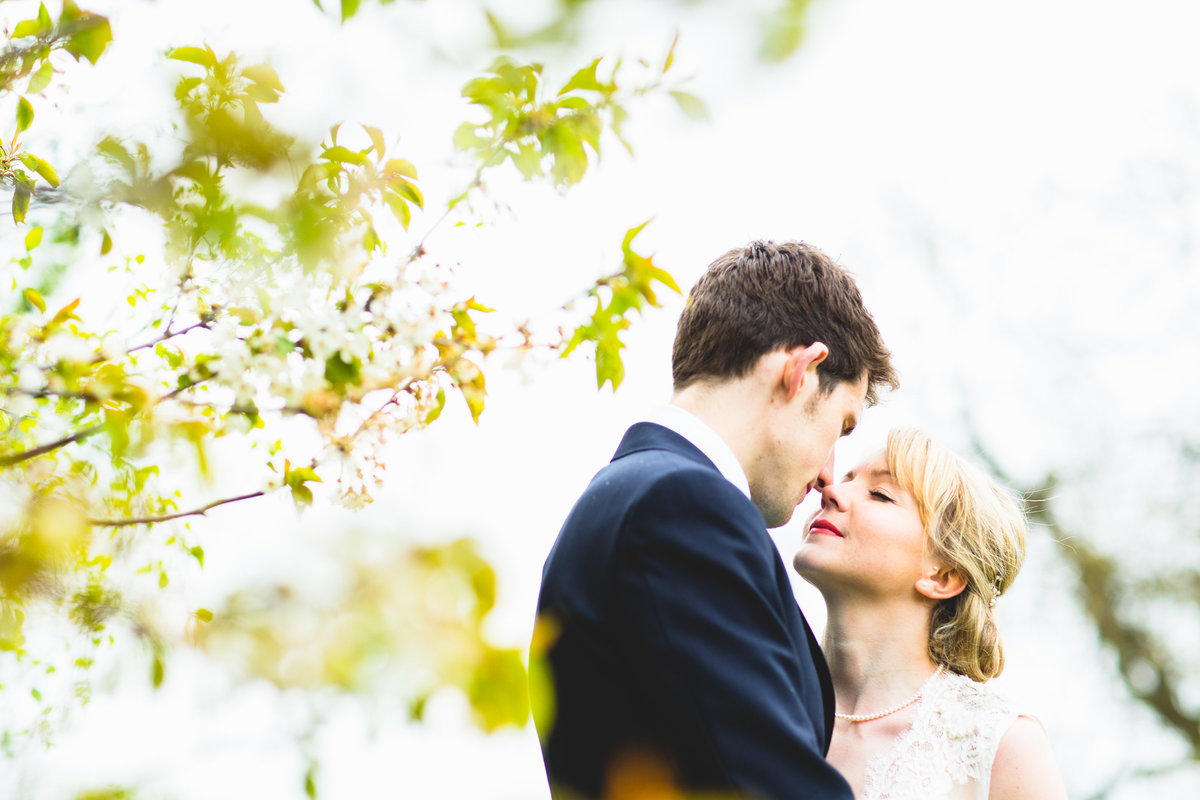wedding couple eskimo kissing under a blossom tree