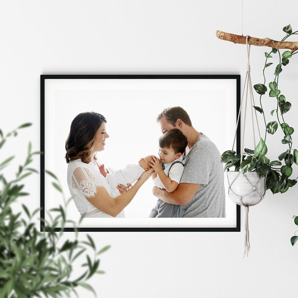 Frames and plants - Newborn.small