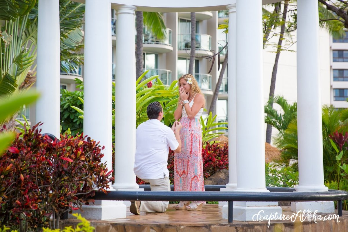 suprise-proposal-gazebo