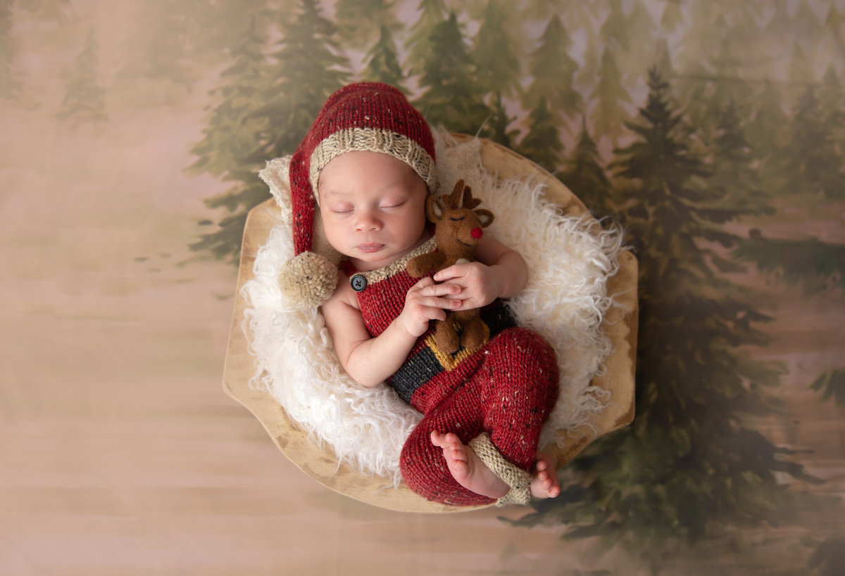 santa baby themed christmas newborn portrait session