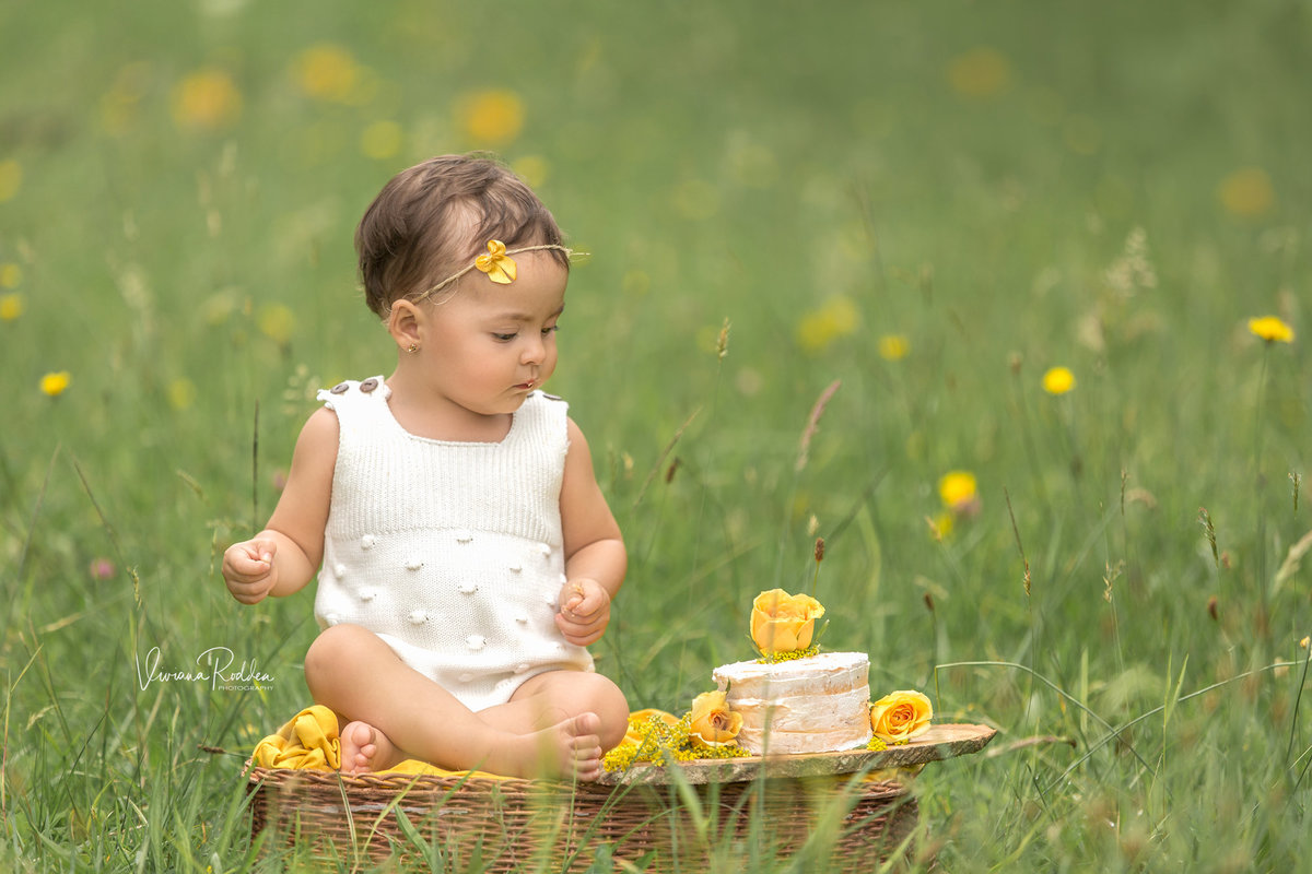 viviana-rodden-photography-child-field-cake