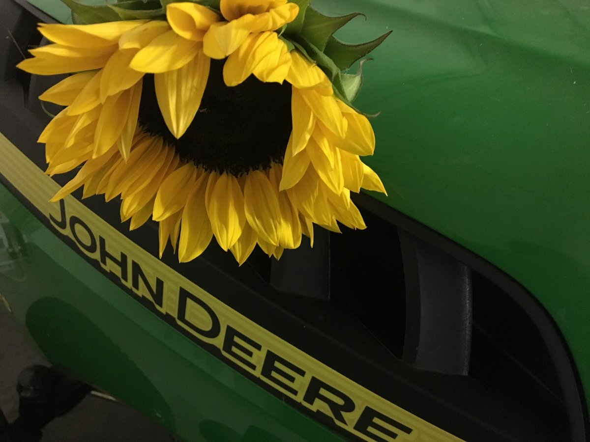 John Deere riding lawn tractor with sunflower bloom